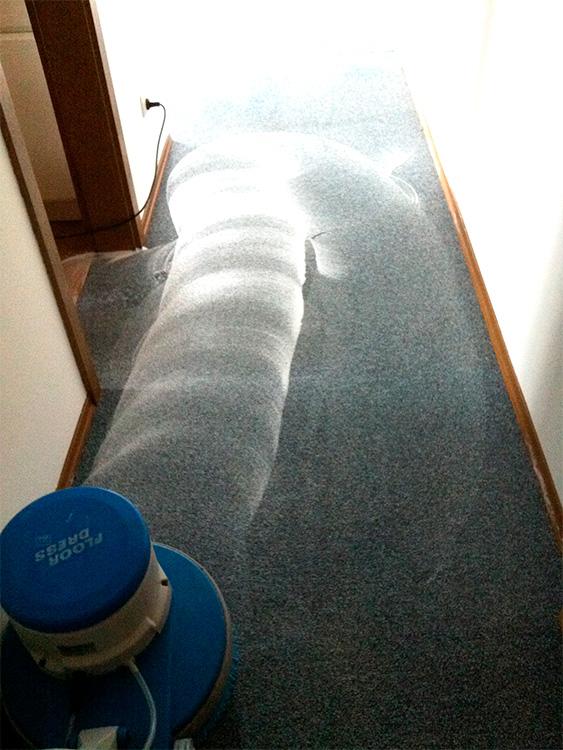 Professionelle Teppichreinigung und Polsterreinigung